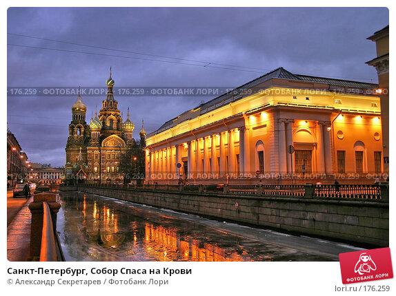 Санкт-Петербург, Собор Спаса на Крови, фото № 176259, снято 14 января 2008 г. (c) Александр Секретарев / Фотобанк Лори