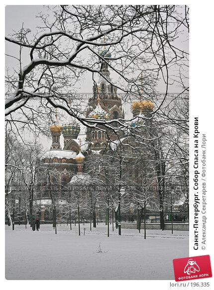 Санкт-Петербург. Собор Спаса на Крови, фото № 196335, снято 4 февраля 2008 г. (c) Александр Секретарев / Фотобанк Лори