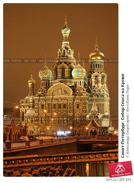 Санкт-Петербург. Собор Спаса на Крови, фото № 207931, снято 17 декабря 2005 г. (c) Александр Секретарев / Фотобанк Лори