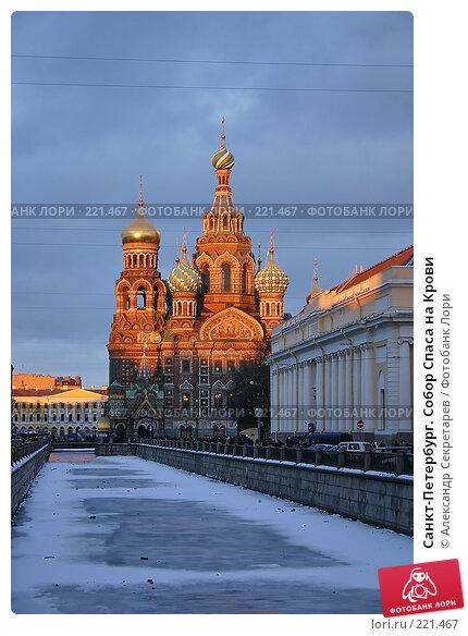 Санкт-Петербург. Собор Спаса на Крови, фото № 221467, снято 3 января 2005 г. (c) Александр Секретарев / Фотобанк Лори