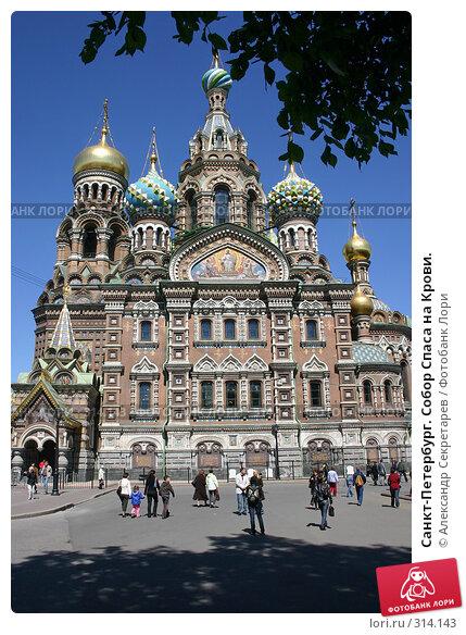 Санкт-Петербург. Собор Спаса на Крови., фото № 314143, снято 7 июня 2008 г. (c) Александр Секретарев / Фотобанк Лори