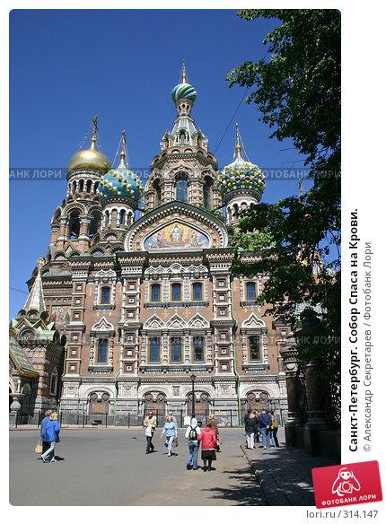 Купить «Санкт-Петербург. Собор Спаса на Крови.», фото № 314147, снято 7 июня 2008 г. (c) Александр Секретарев / Фотобанк Лори