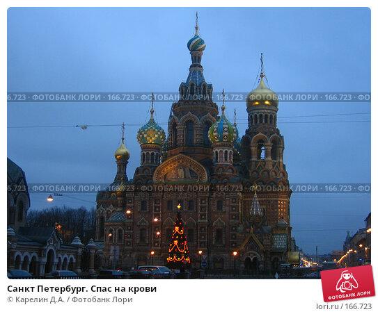 Санкт Петербург. Спас на крови, фото № 166723, снято 13 декабря 2006 г. (c) Карелин Д.А. / Фотобанк Лори