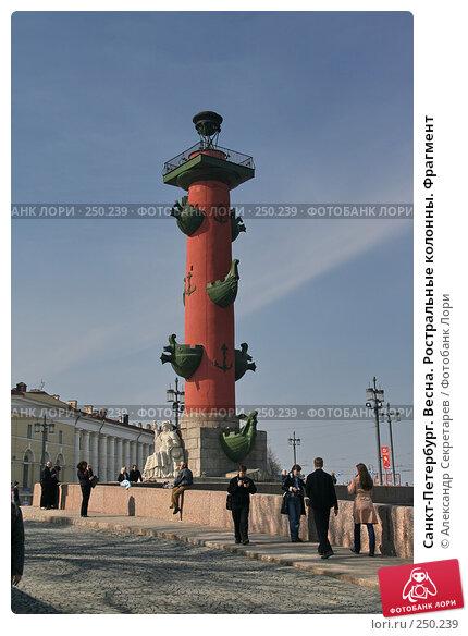 Санкт-Петербург. Весна. Ростральные колонны. Фрагмент, фото № 250239, снято 5 апреля 2008 г. (c) Александр Секретарев / Фотобанк Лори