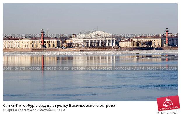 Санкт-Петербург, вид на стрелку Васильевского острова, эксклюзивное фото № 36975, снято 9 апреля 2006 г. (c) Ирина Терентьева / Фотобанк Лори