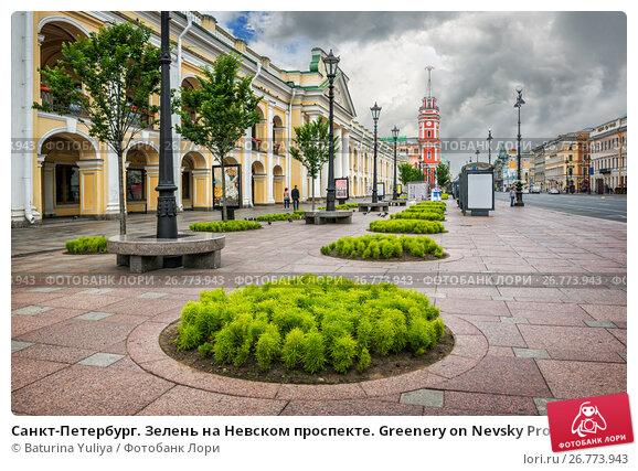 Купить «Санкт-Петербург. Зелень на Невском проспекте. Greenery on Nevsky Prospekt», фото № 26773943, снято 9 июля 2017 г. (c) Baturina Yuliya / Фотобанк Лори