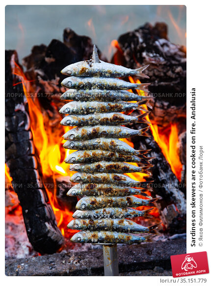 Sardines on skewers are cooked on fire. Andalusia. Стоковое фото, фотограф Яков Филимонов / Фотобанк Лори