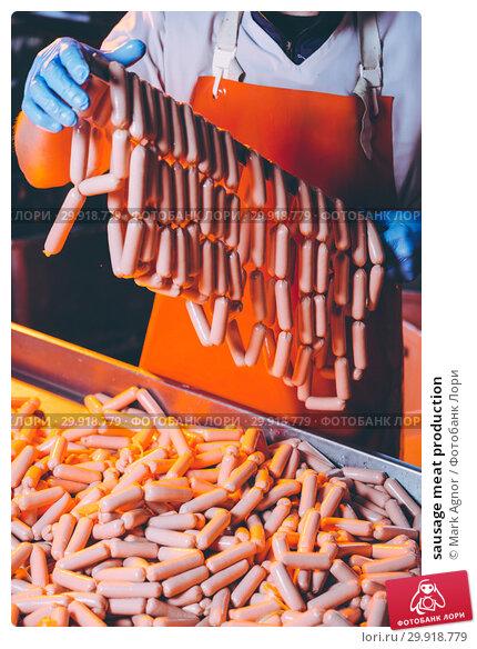 Купить «sausage meat production», фото № 29918779, снято 7 февраля 2019 г. (c) Mark Agnor / Фотобанк Лори