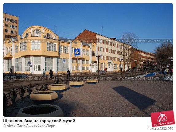 Щелково. Вид на городской музей, эксклюзивное фото № 232979, снято 10 марта 2008 г. (c) Alexei Tavix / Фотобанк Лори