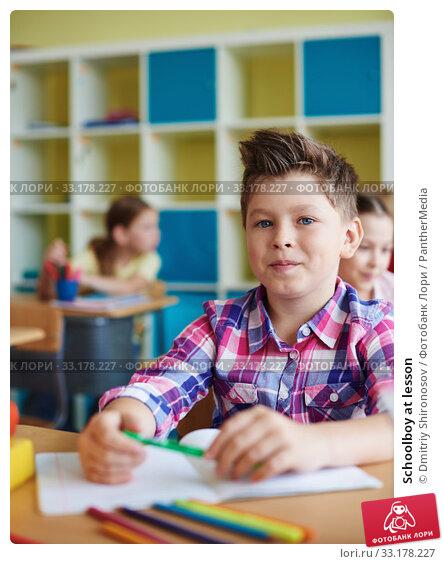 Купить «Schoolboy at lesson», фото № 33178227, снято 12 июля 2020 г. (c) PantherMedia / Фотобанк Лори