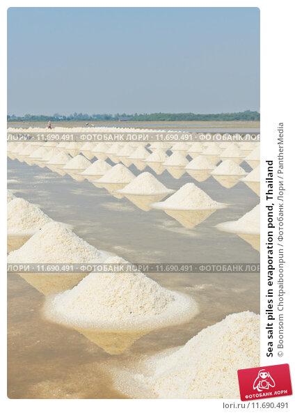 evaporation and salt