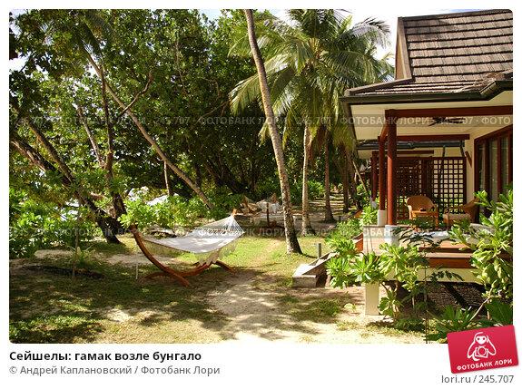 Сейшелы: гамак возле бунгало, фото № 245707, снято 28 августа 2007 г. (c) Андрей Каплановский / Фотобанк Лори