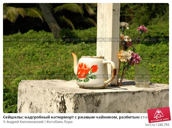 Сейшелы: надгробный натюрморт с ржавым чайником, разбитым стаканом и искусственными гвоздиками, фото № 245755, снято 29 августа 2007 г. (c) Андрей Каплановский / Фотобанк Лори