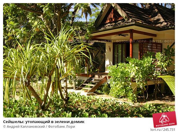 Сейшелы: утопающий в зелени домик, фото № 245731, снято 29 августа 2007 г. (c) Андрей Каплановский / Фотобанк Лори