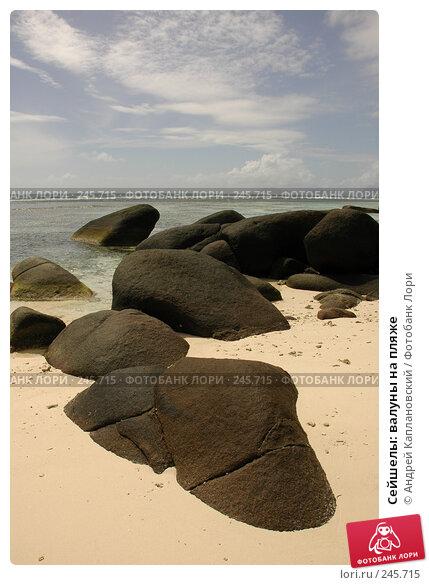 Сейшелы: валуны на пляже, фото № 245715, снято 28 августа 2007 г. (c) Андрей Каплановский / Фотобанк Лори