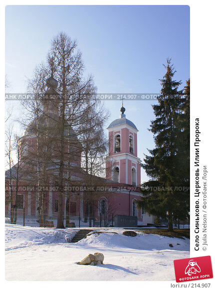 Село Синьково. Церковь Илии Пророка, фото № 214907, снято 12 февраля 2008 г. (c) Julia Nelson / Фотобанк Лори