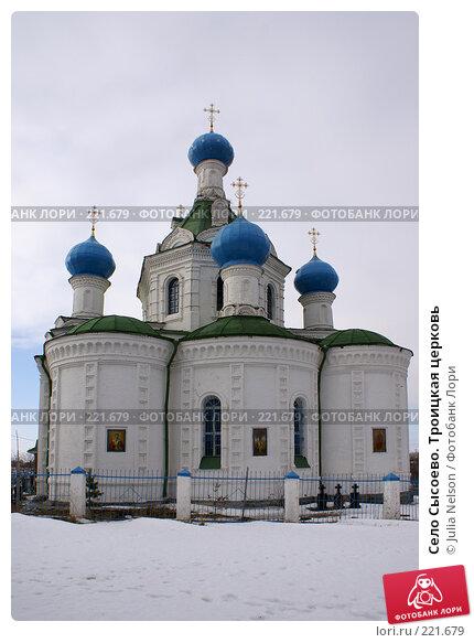 Село Сысоево. Троицкая церковь, фото № 221679, снято 12 февраля 2008 г. (c) Julia Nelson / Фотобанк Лори