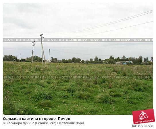 Сельская картина в городе, Почеп, фото № 36535, снято 24 августа 2017 г. (c) Элеонора Лукина (GenuineLera) / Фотобанк Лори
