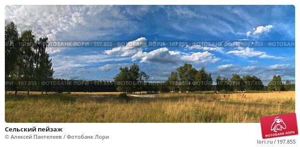 Сельский пейзаж, фото № 197855, снято 23 июля 2007 г. (c) Алексей Пантелеев / Фотобанк Лори