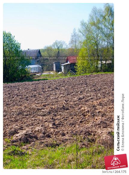 Сельский пейзаж, фото № 264175, снято 25 апреля 2008 г. (c) Елена Блохина / Фотобанк Лори