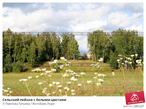 Купить «Сельский пейзаж с белыми цветами», фото № 280627, снято 14 июля 2007 г. (c) Павлова Татьяна / Фотобанк Лори