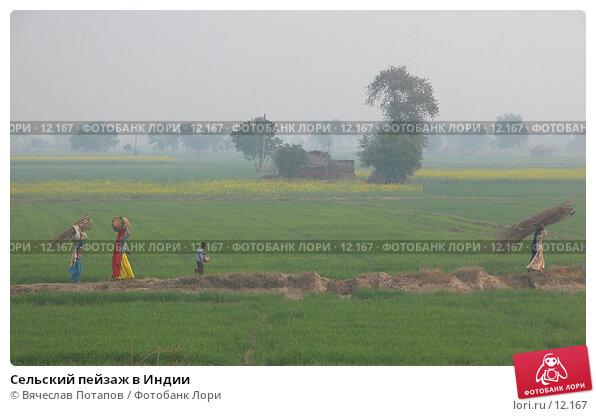 Сельский пейзаж в Индии, фото № 12167, снято 11 декабря 2004 г. (c) Вячеслав Потапов / Фотобанк Лори