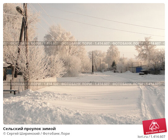 Сельский проулок зимой. Стоковое фото, фотограф Сергей Ширинский / Фотобанк Лори