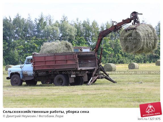 Купить «Сельскохозяйственные работы, уборка сена», эксклюзивное фото № 327975, снято 12 июня 2008 г. (c) Дмитрий Неумоин / Фотобанк Лори