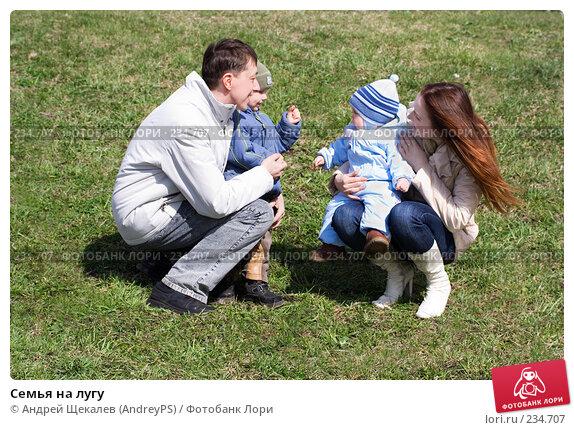 Купить «Семья на лугу», фото № 234707, снято 23 апреля 2018 г. (c) Андрей Щекалев (AndreyPS) / Фотобанк Лори