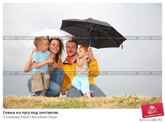 Купить «Семья на лугу под зонтиком», фото № 260751, снято 21 апреля 2018 г. (c) Losevsky Pavel / Фотобанк Лори