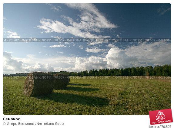 Сенокос, фото № 70507, снято 5 августа 2007 г. (c) Игорь Веснинов / Фотобанк Лори