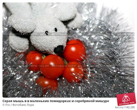 Серая мышь в в маленьких помидорках и серебряной мишуре, фото № 142295, снято 25 июня 2017 г. (c) Fro / Фотобанк Лори