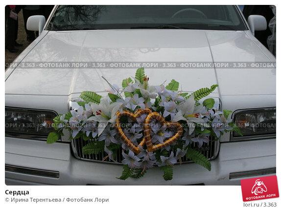 Купить «Сердца», фото № 3363, снято 19 ноября 2005 г. (c) Ирина Терентьева / Фотобанк Лори