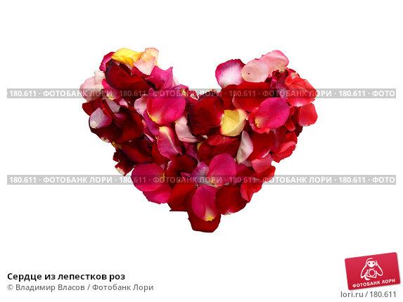 Сердце из лепестков роз, фото № 180611, снято 19 января 2008 г. (c) Владимир Власов / Фотобанк Лори