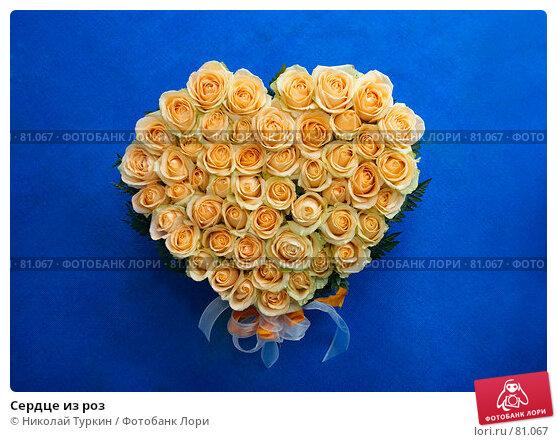 Сердце из роз, фото № 81067, снято 25 августа 2007 г. (c) Николай Туркин / Фотобанк Лори