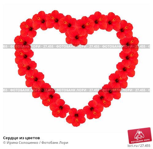 Сердце из цветов, фото № 27455, снято 23 июня 2017 г. (c) Ирина Солошенко / Фотобанк Лори