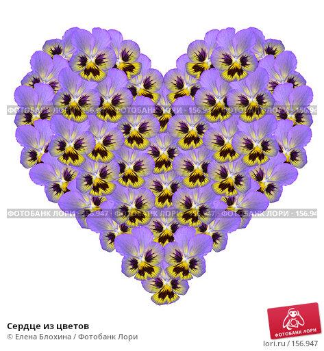 Купить «Сердце из цветов», фото № 156947, снято 21 ноября 2017 г. (c) Елена Блохина / Фотобанк Лори