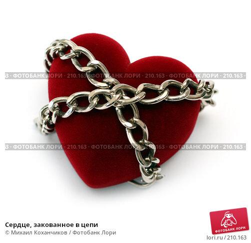 Сердце, закованное в цепи, фото № 210163, снято 25 февраля 2008 г. (c) Михаил Коханчиков / Фотобанк Лори