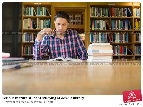 how to study in library essay