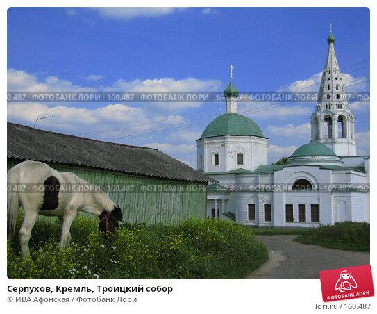 Серпухов, Кремль, Троицкий собор, фото № 160487, снято 28 июня 2006 г. (c) ИВА Афонская / Фотобанк Лори