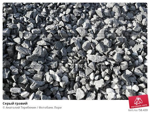 Купить «Серый гравий», фото № 58439, снято 13 июня 2007 г. (c) Анатолий Теребенин / Фотобанк Лори
