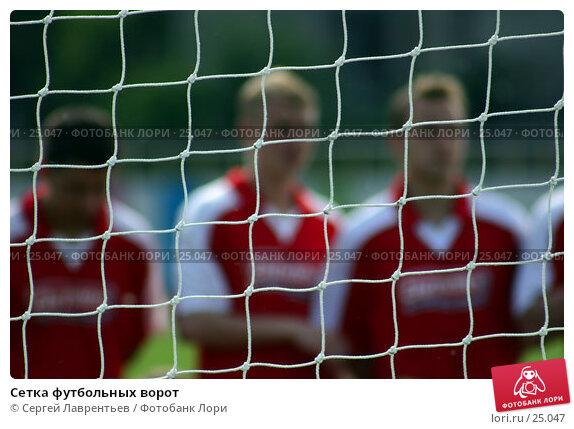 Сетка футбольных ворот, фото № 25047, снято 1 марта 2017 г. (c) Сергей Лаврентьев / Фотобанк Лори