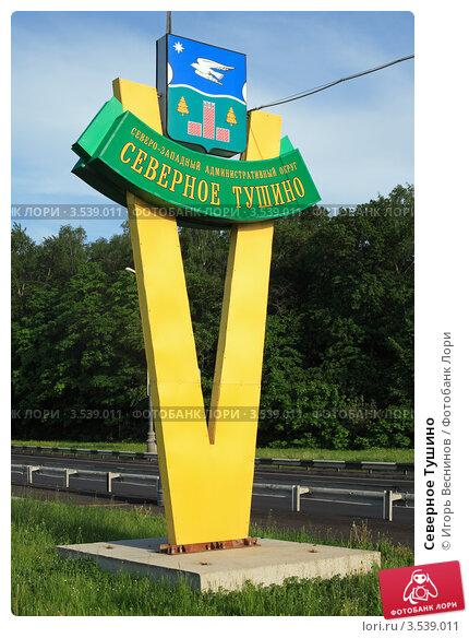 Купить «Северное Тушино», эксклюзивное фото № 3539011, снято 20 мая 2012 г. (c) Игорь Веснинов / Фотобанк Лори