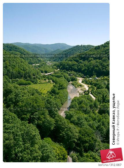 Северный Кавказ, ущелье, фото № 312087, снято 5 июня 2008 г. (c) Игорь Р / Фотобанк Лори