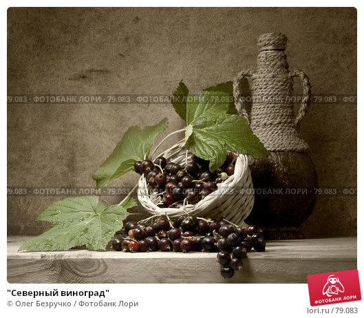 """Купить «""""Северный виноград""""», фото № 79083, снято 24 июля 2006 г. (c) Олег Безручко / Фотобанк Лори"""