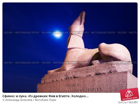 Сфинкс и луна. Из древних Фив в Египте. Холодно..., эксклюзивное фото № 163991, снято 20 декабря 2007 г. (c) Александр Алексеев / Фотобанк Лори