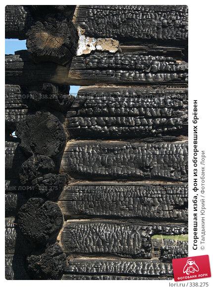 Сгоревшая изба, фон из обгоревших брёвен, фото № 338275, снято 18 июня 2008 г. (c) Талдыкин Юрий / Фотобанк Лори