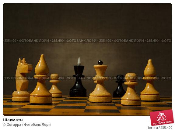 Шахматы, фото № 235499, снято 5 марта 2007 г. (c) Goruppa / Фотобанк Лори