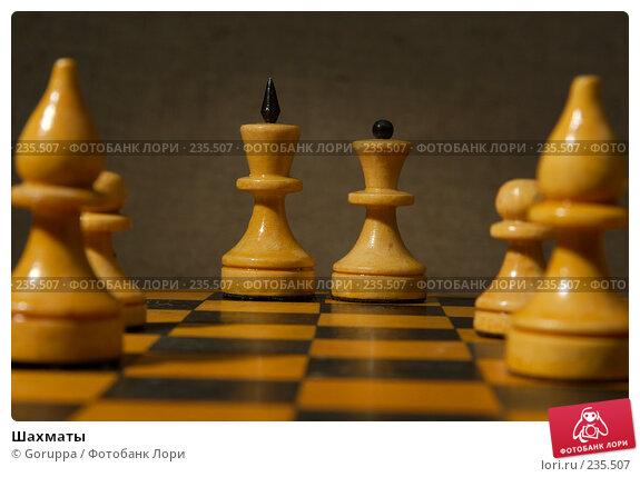 Шахматы, фото № 235507, снято 5 марта 2007 г. (c) Goruppa / Фотобанк Лори