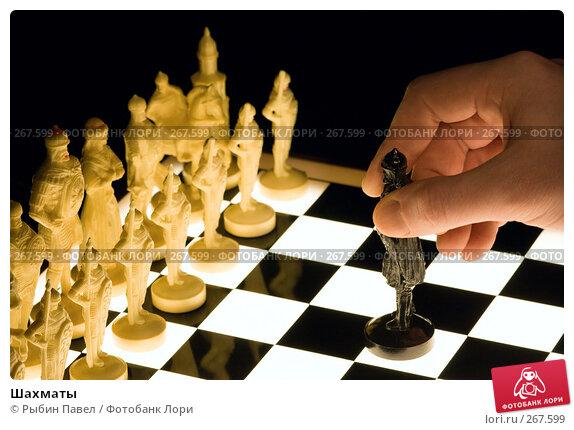Шахматы, фото № 267599, снято 22 апреля 2008 г. (c) Рыбин Павел / Фотобанк Лори